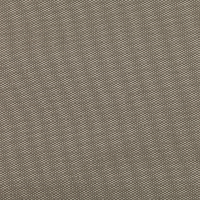 Cleveland Spacedust Fabric