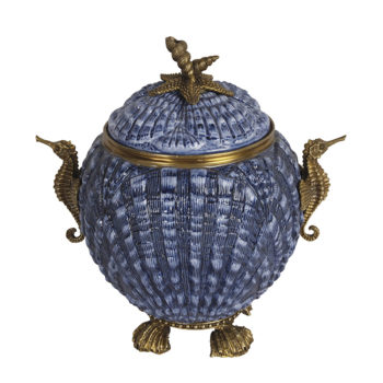 Blue Seahorse Canister