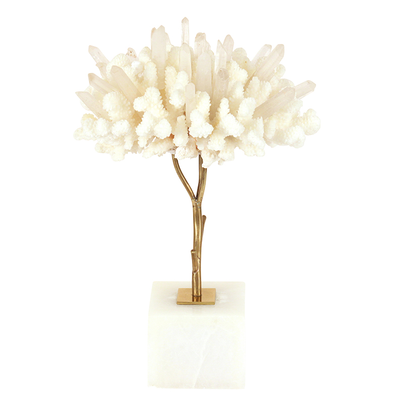 white coral tree